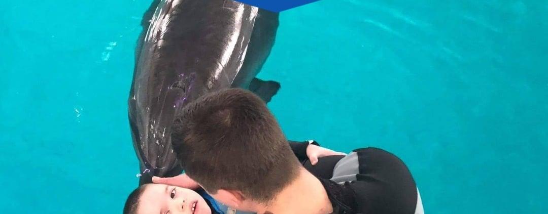 delfínoterapia| pomoc