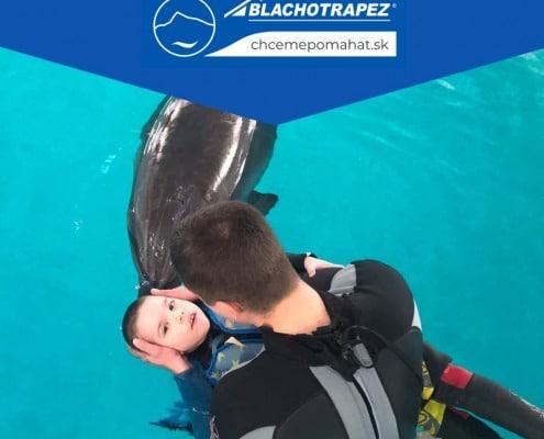 delfínoterapia  pomoc