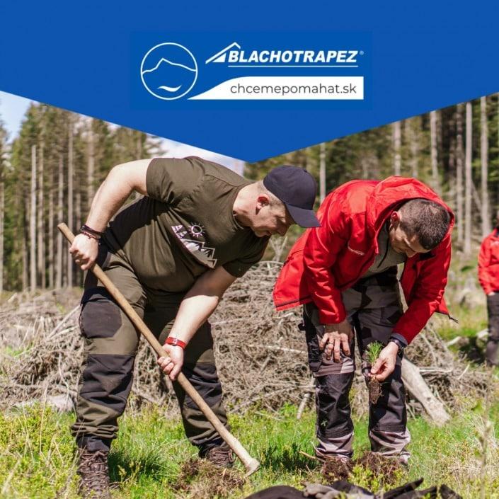 sadenie stromčekov| výsadba lesa